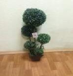 """Искусственное растение """"RP-J1022"""""""