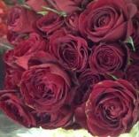 Роза спрей Rubicon (Рубикон)
